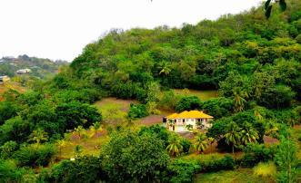 David Estate House and 8 Acres of Fertile Land