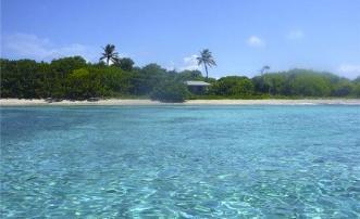 PRIVATE ISLAND Saline Island - Grenada