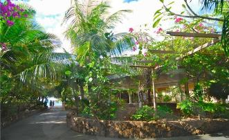 Waterfront Hotel & Restaurant Bougainvilla