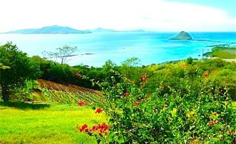 South Facing Land - Union Island
