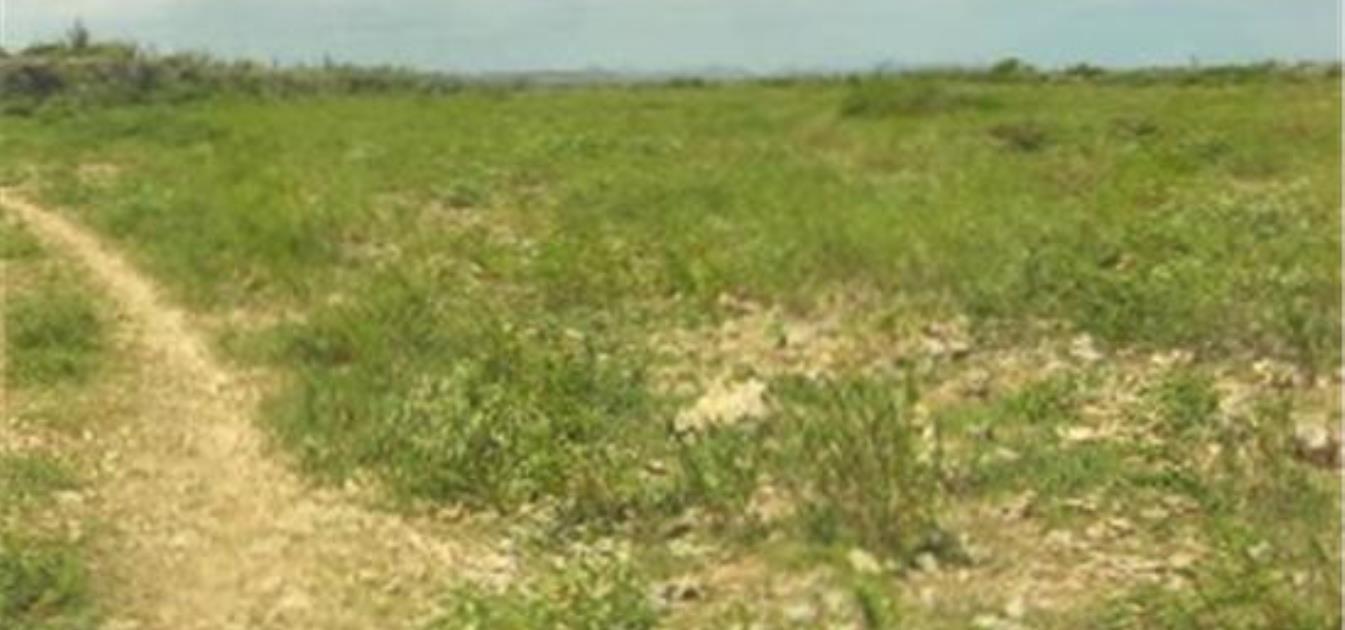 12 acre Yatu Baku
