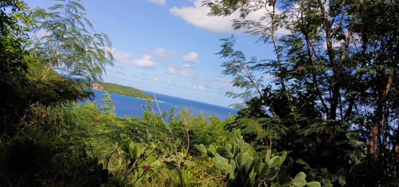 Carriacou Dream Lot