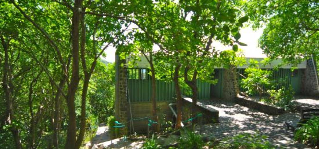 Spring Lodge