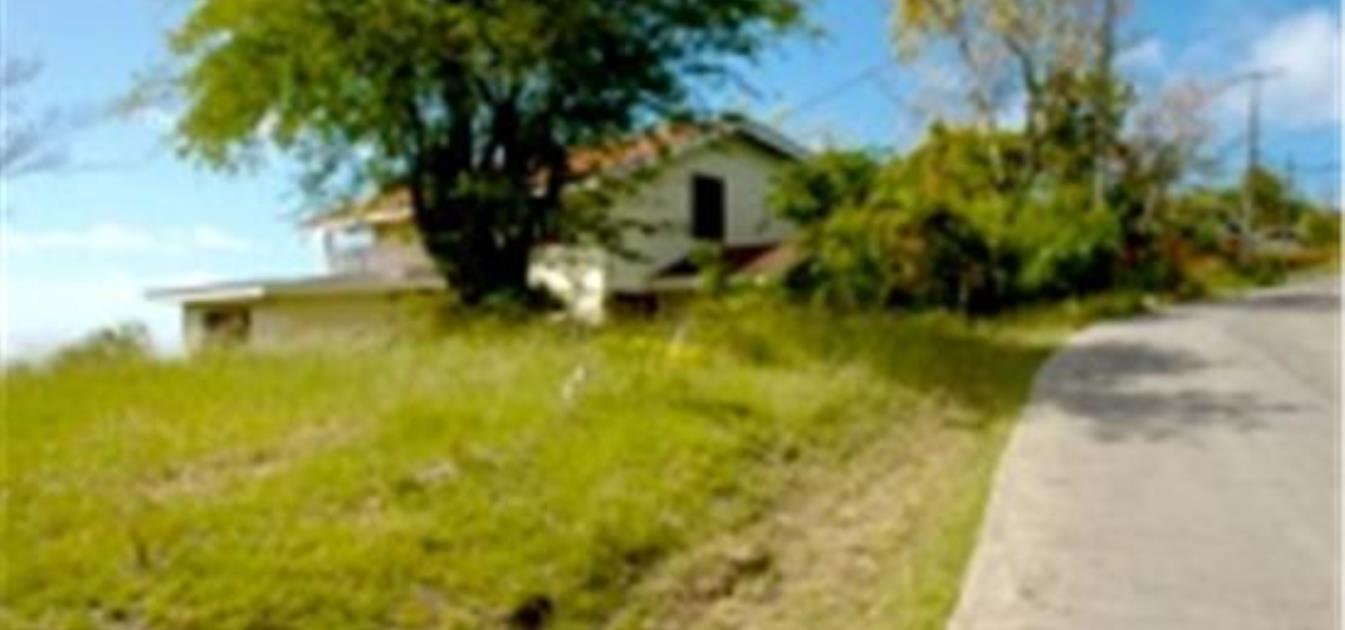Cap Estate Young Land