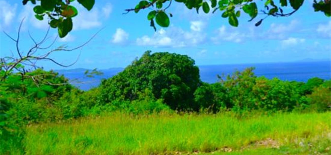 Mount Pleasant Land GR863