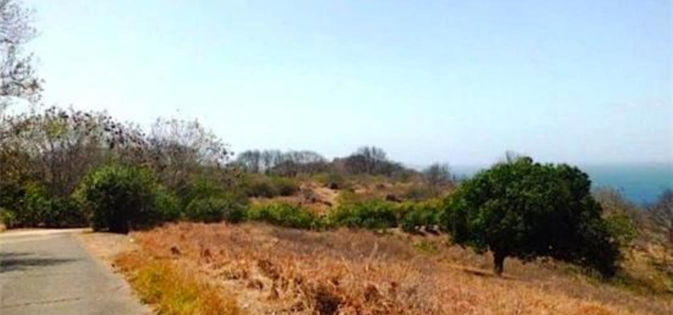 Mount Pleasant Residential Land