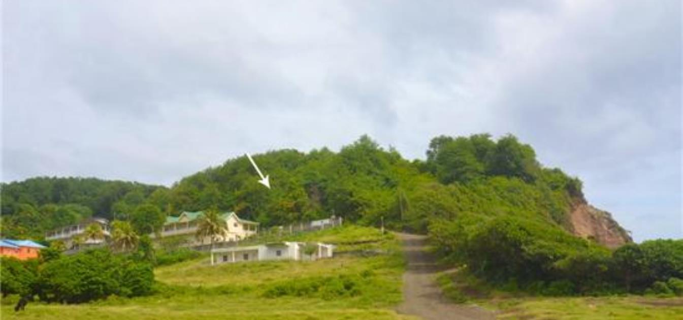 Mount Pleasant Land Lot 24