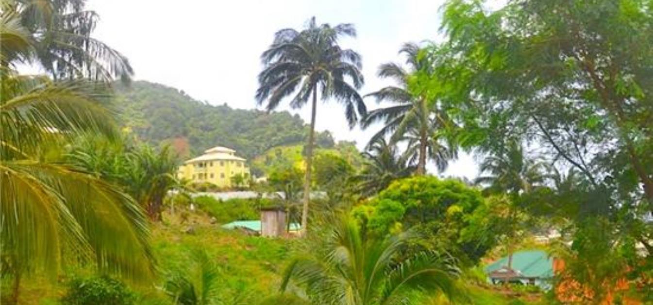 Lodge Mountain Land
