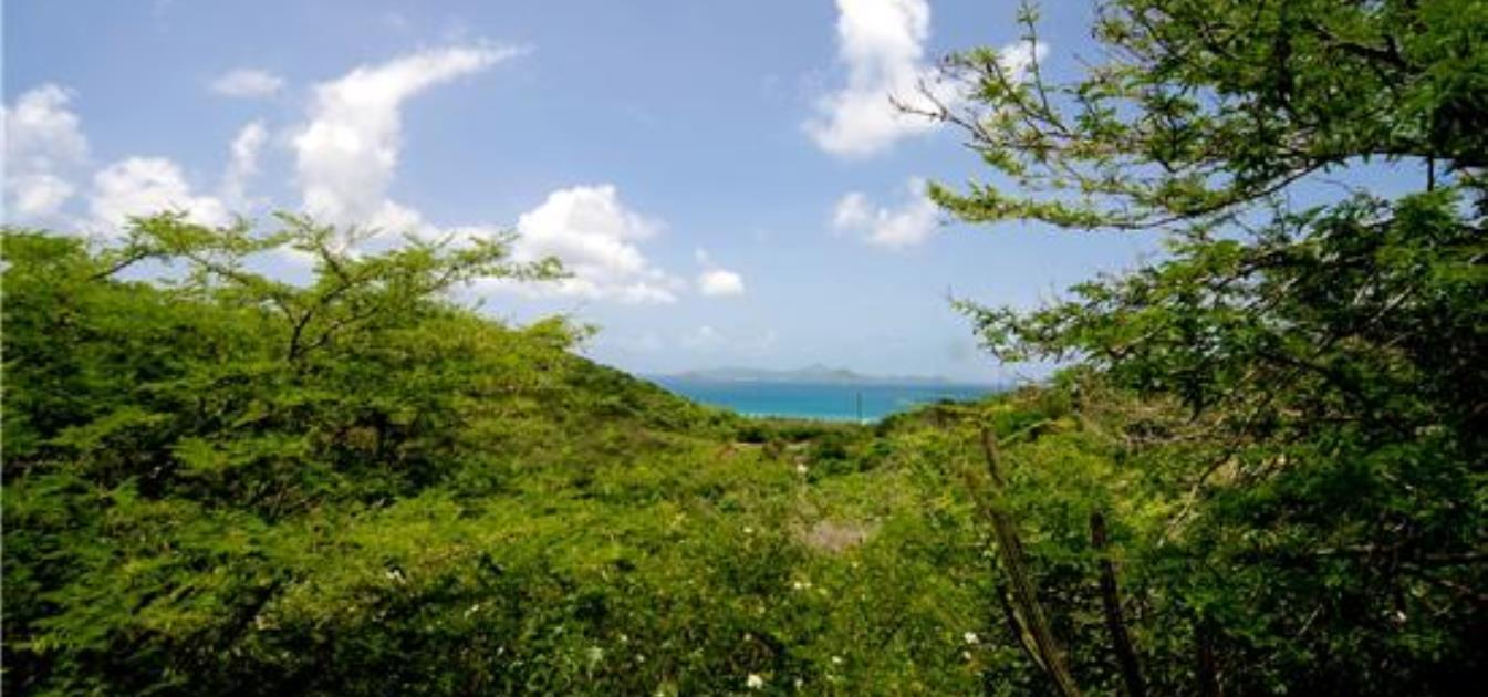 Ridgetop Land