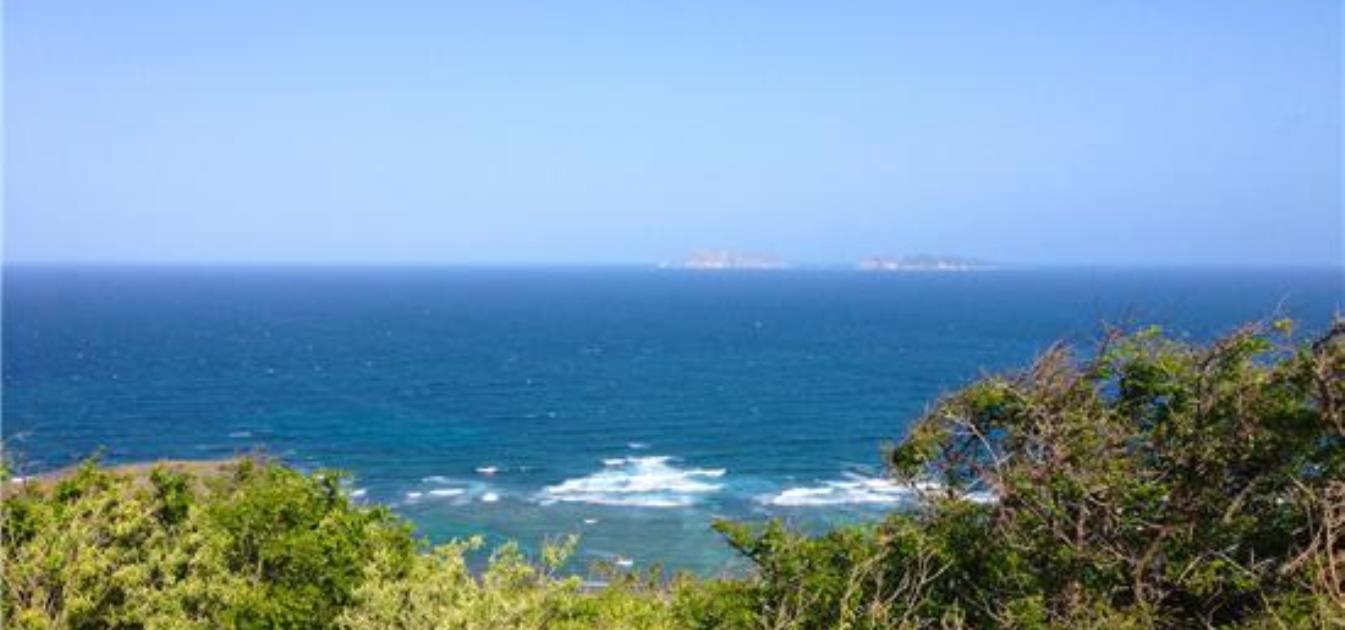 Ocean Ridge 1.1 Acres