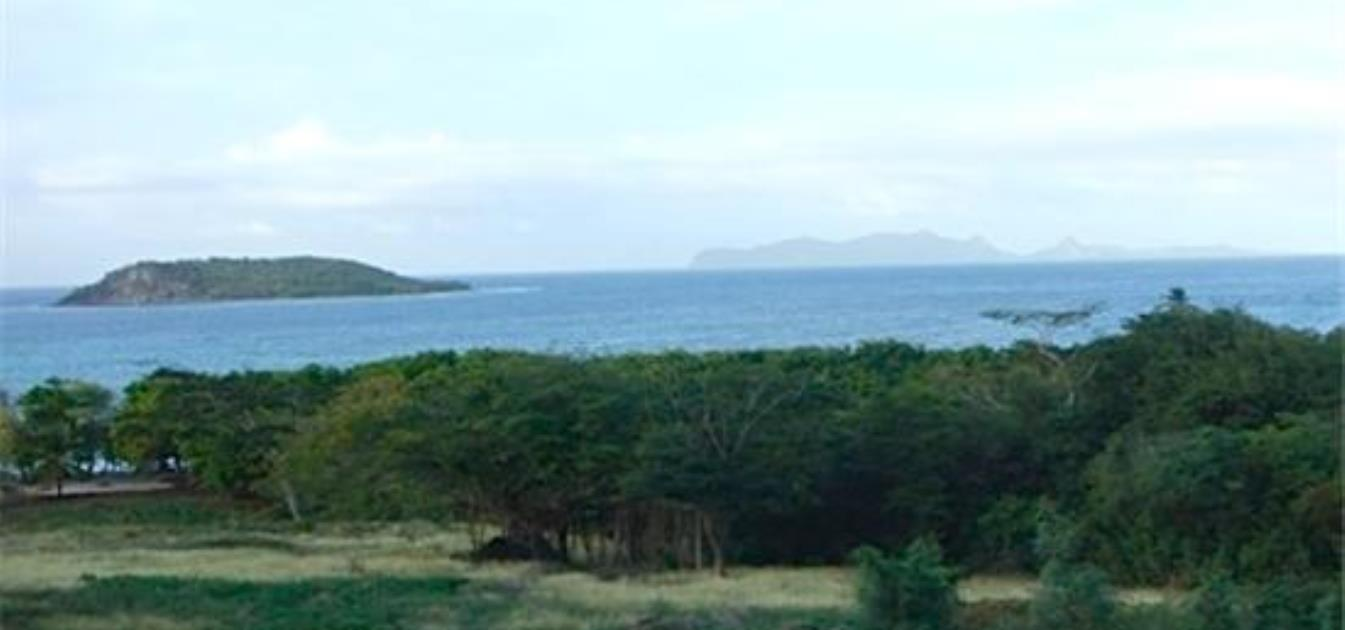 Fiji Beachfront Land