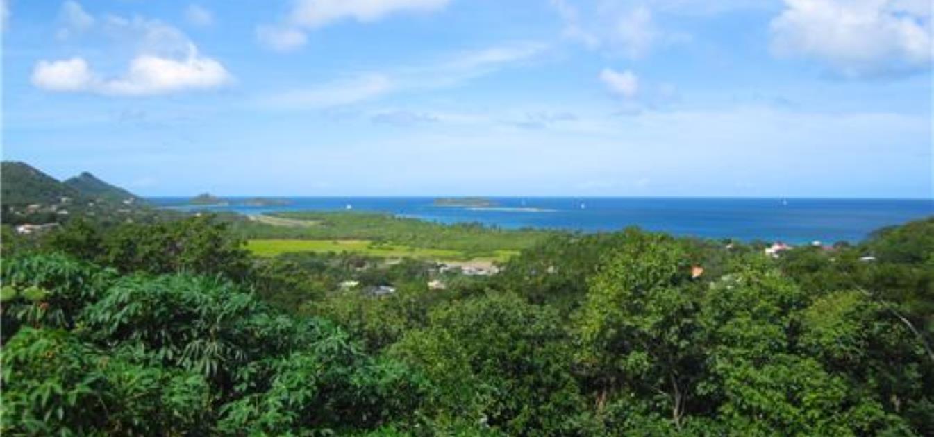Hillside Land Prospect 1 Acre