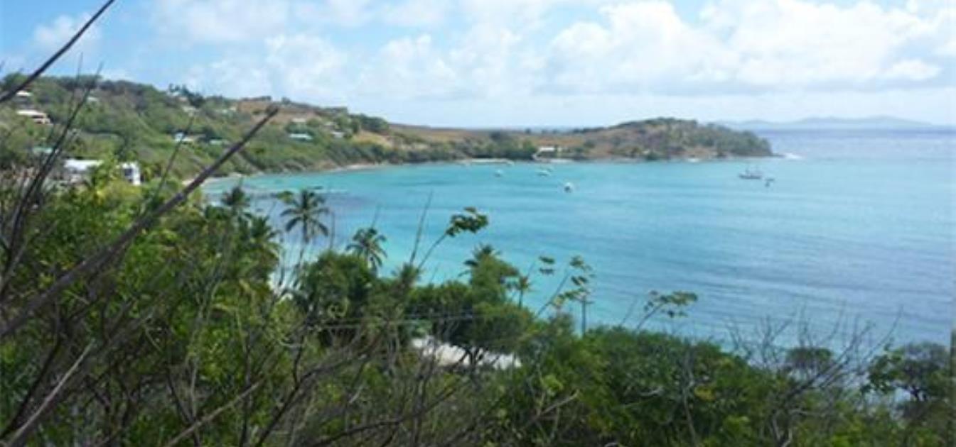 Friendship Bay Beach Land