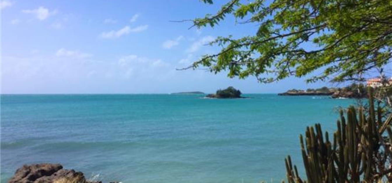 True Blue Point Headland Lot B