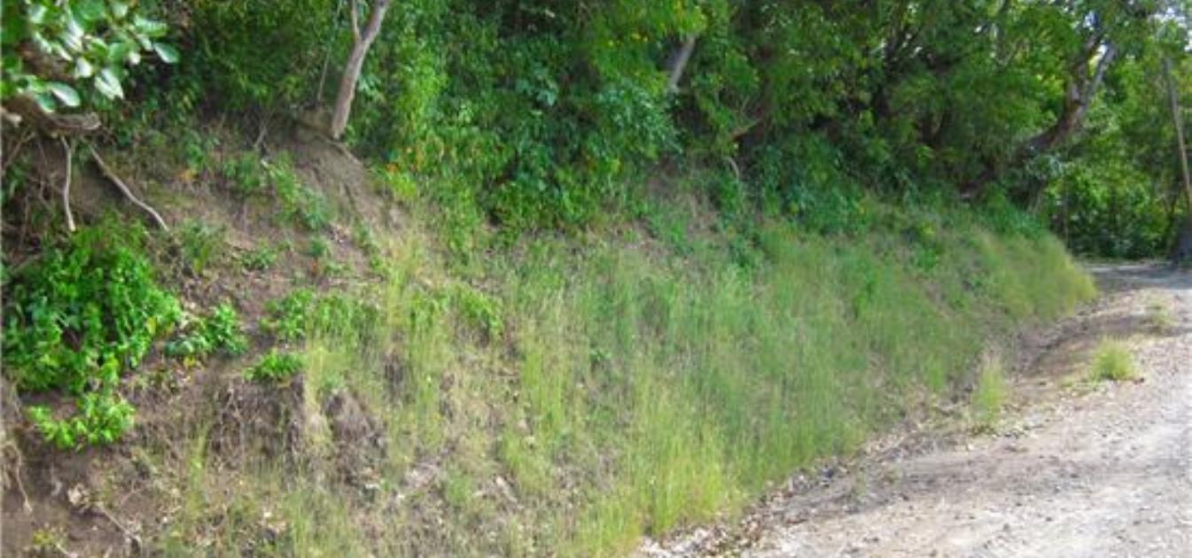 Hillside Land Prospect 2.5 Acre