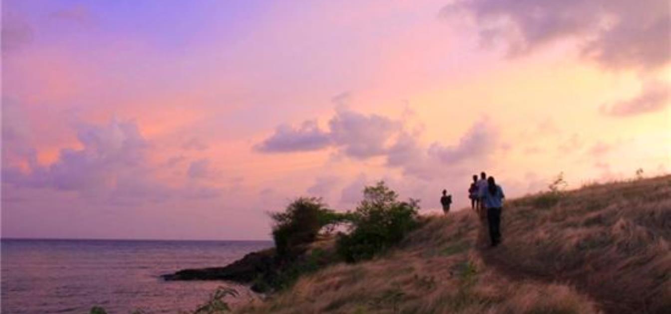 True Blue Point Headland