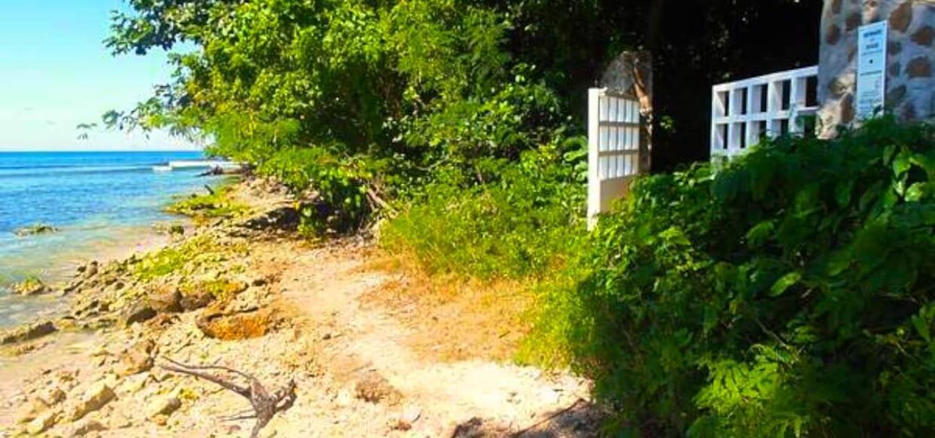 Prospect Estate Sparrow Hawk
