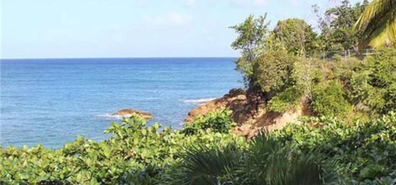 Shingle Cove