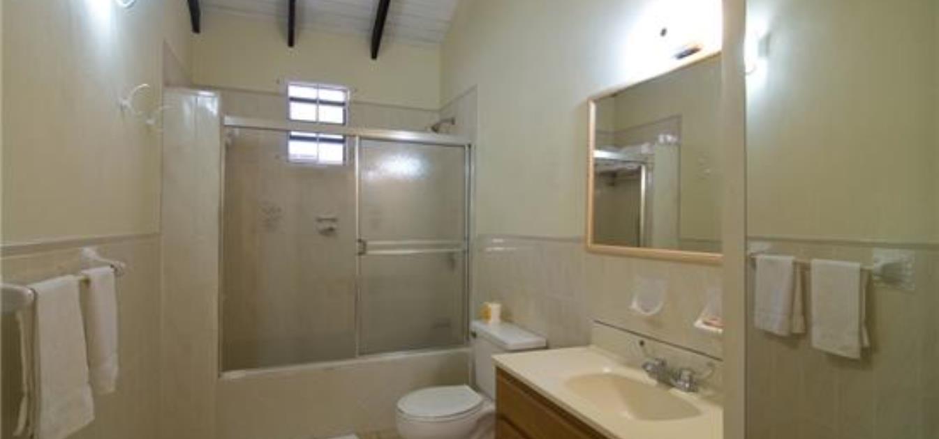 Kingsville 3 Apartments Option