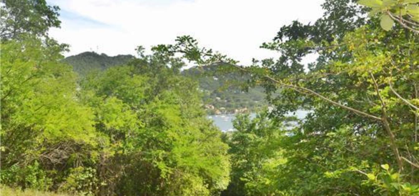 Ocar Hillside Land