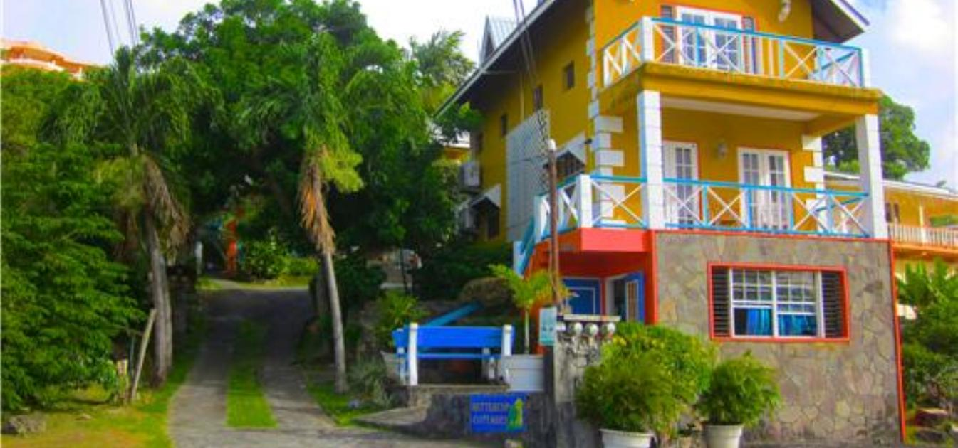 vacation-rentals/st-vincent-and-the-grenadines/st--vincent/arnos-vale/buttercup-cottage-hibiscus-apt