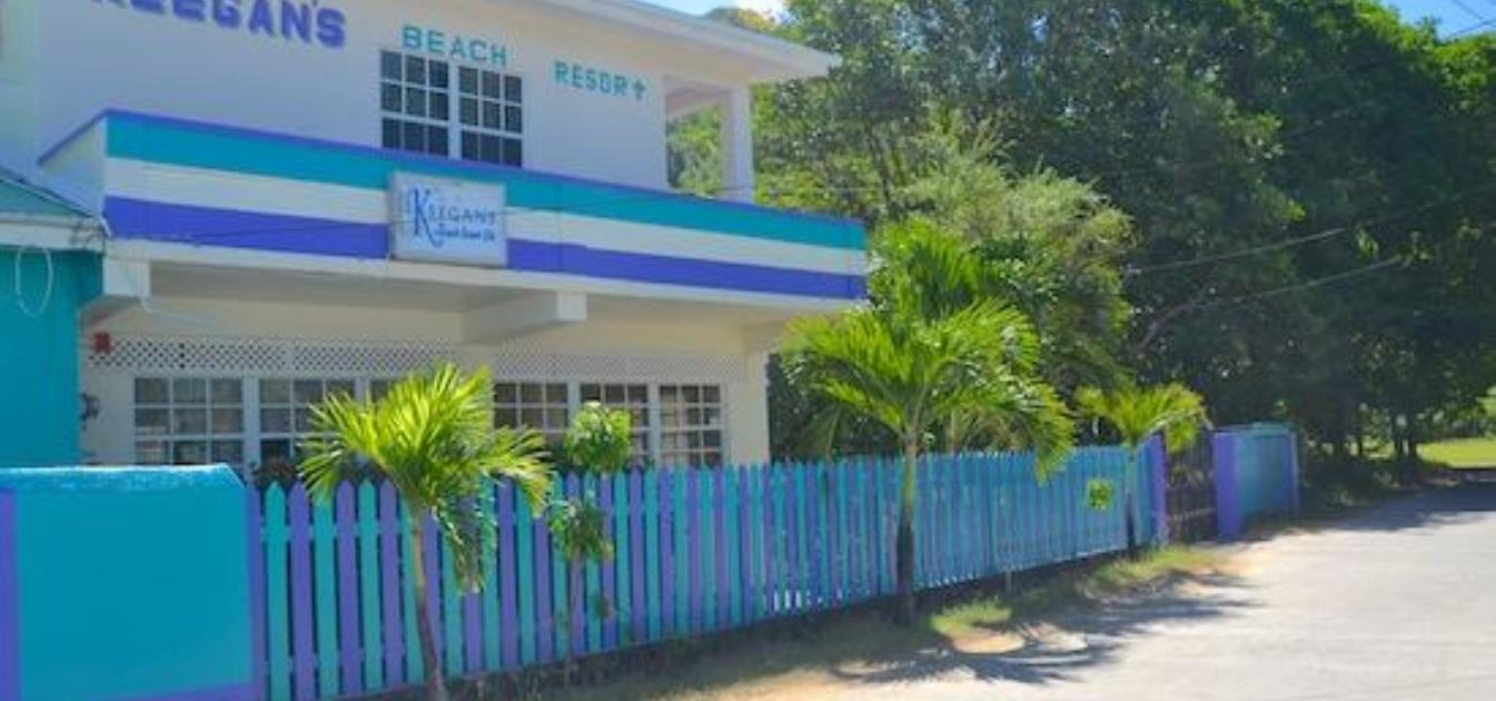 vacation-rentals/st-vincent-and-the-grenadines/bequia/lower-bay/keegan's-apartment-hummingbird
