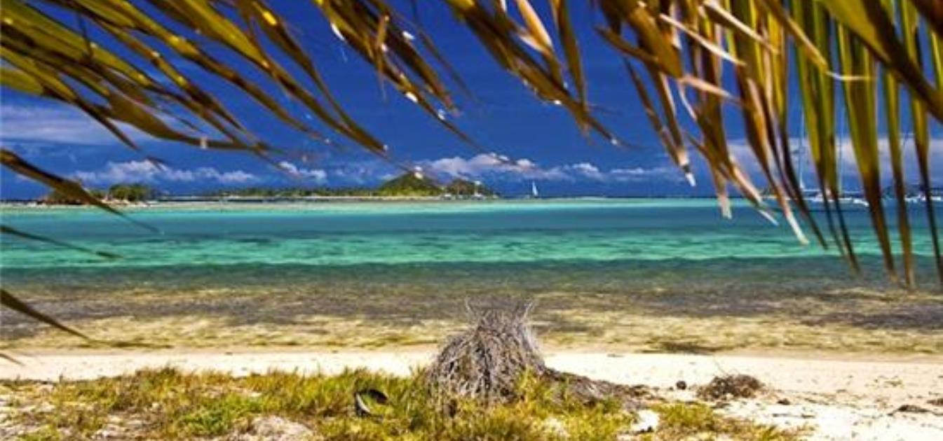 vacation-rentals/st-vincent-and-the-grenadines/union-island/clifton/anchorage-beach-cottage-apartment