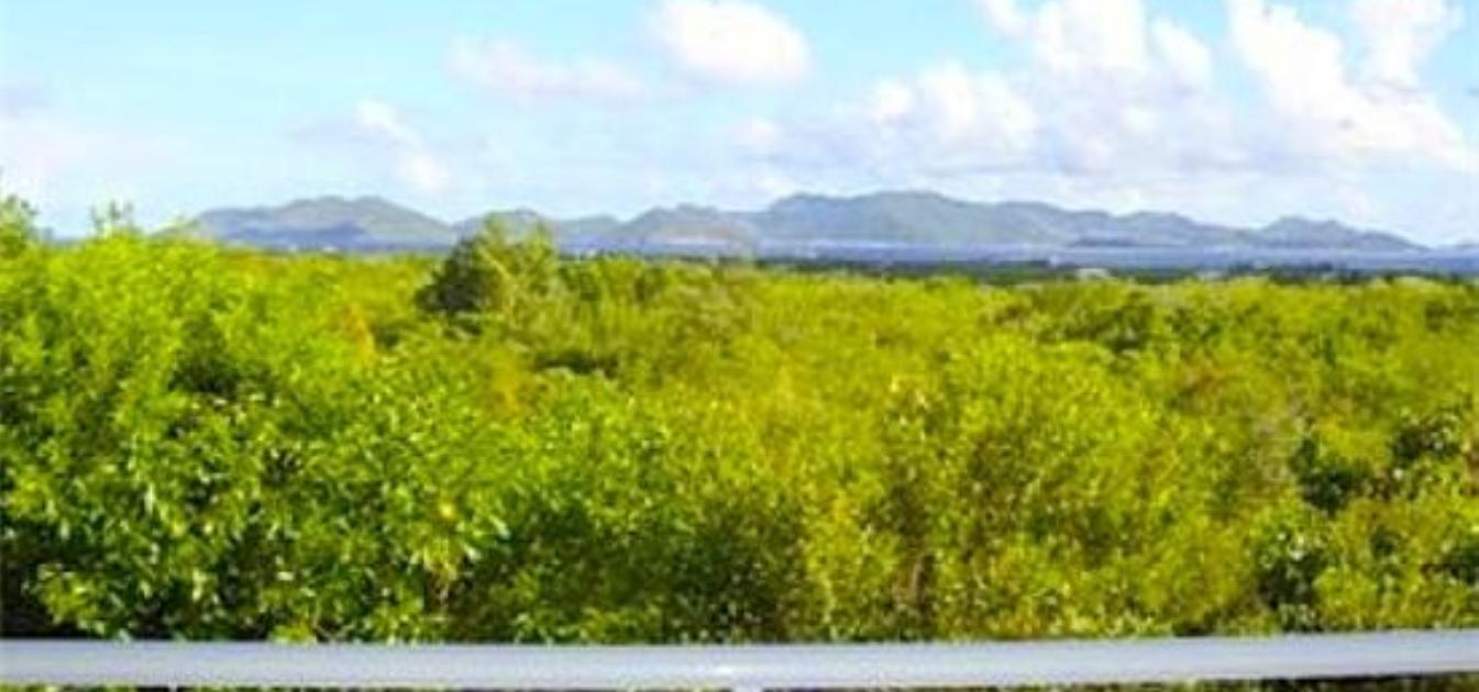 vacation-rentals/anguilla/anguilla/blowing-point/long-term-anguilla-rental-2-bed