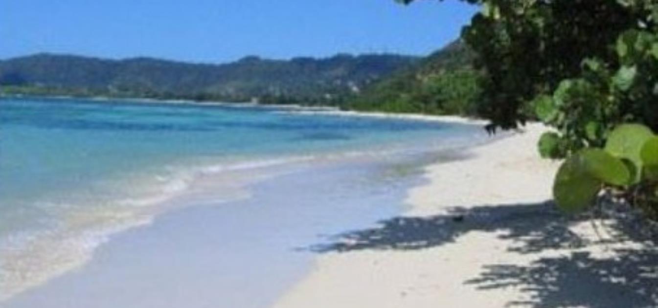 vacation-rentals/grenada/carriacou/l'esterre/seaclusion-suites