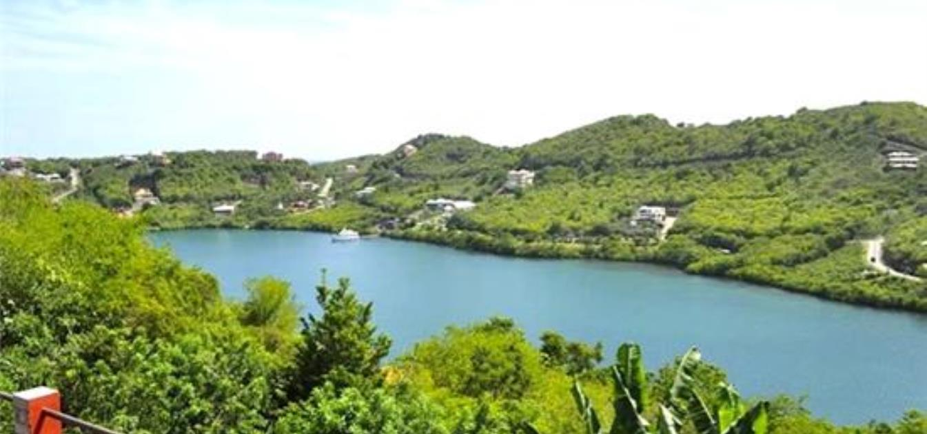 vacation-rentals/grenada/grenada-island/st--georges/robyns-nest-long-term-rentals