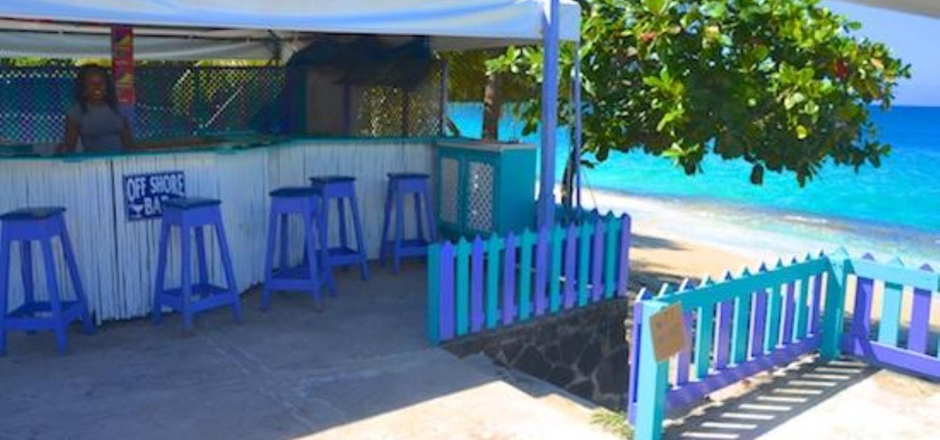 vacation-rentals/st-vincent-and-the-grenadines/bequia/lower-bay/keegan's-studio-octopus