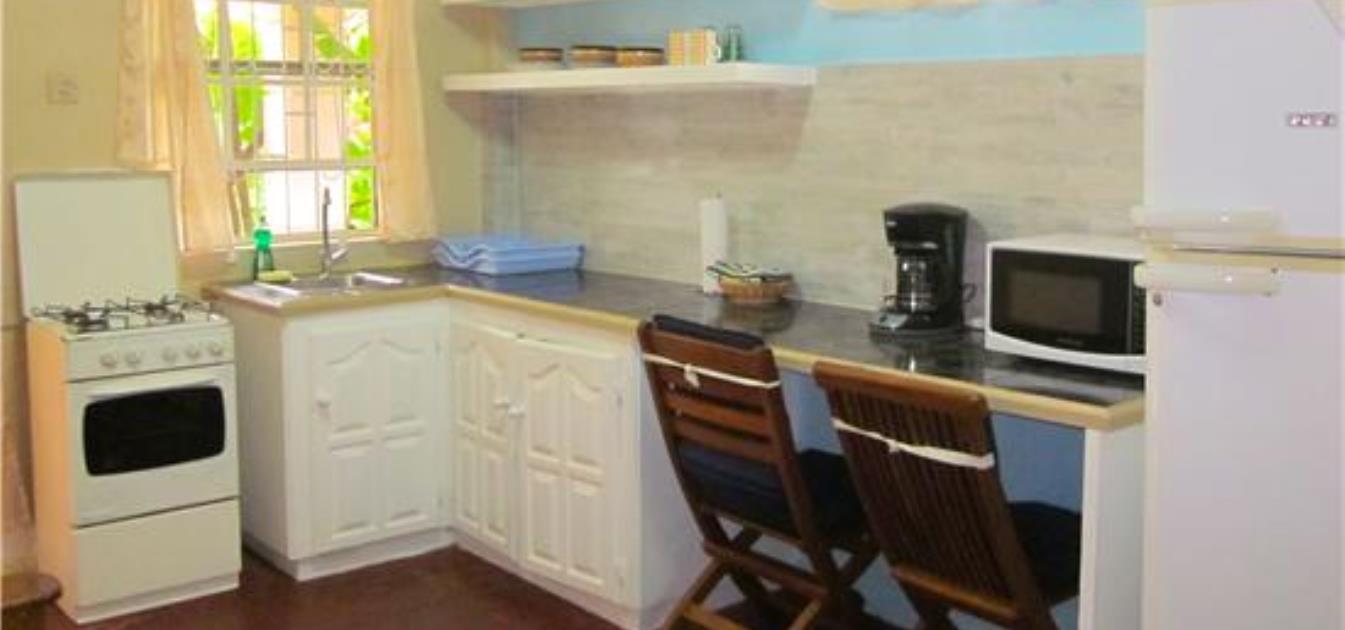 vacation-rentals/st-vincent-and-the-grenadines/st--vincent/arnos-vale/buttercup-cottage-ginger-lily-studio
