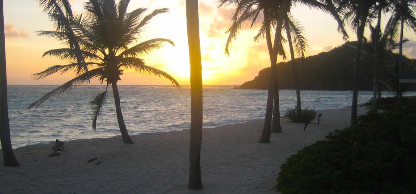 vacation-rentals/st-vincent-and-the-grenadines/palm-island/palm-island/prune-house