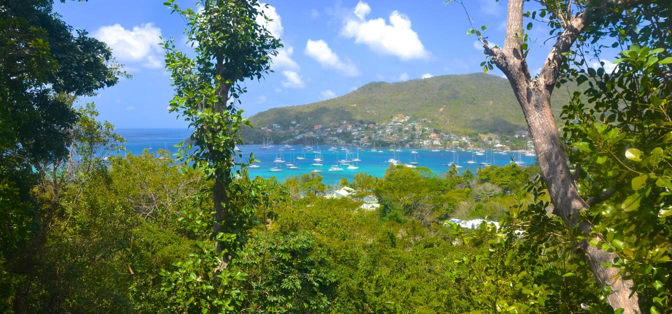 vacation-rentals/st-vincent-and-the-grenadines/bequia/belmont/three-trees