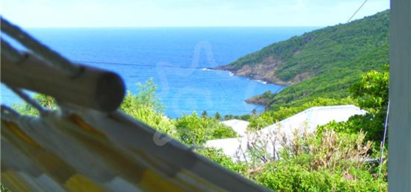 vacation-rentals/st-vincent-and-the-grenadines/bequia/spring/the-cotton-tree