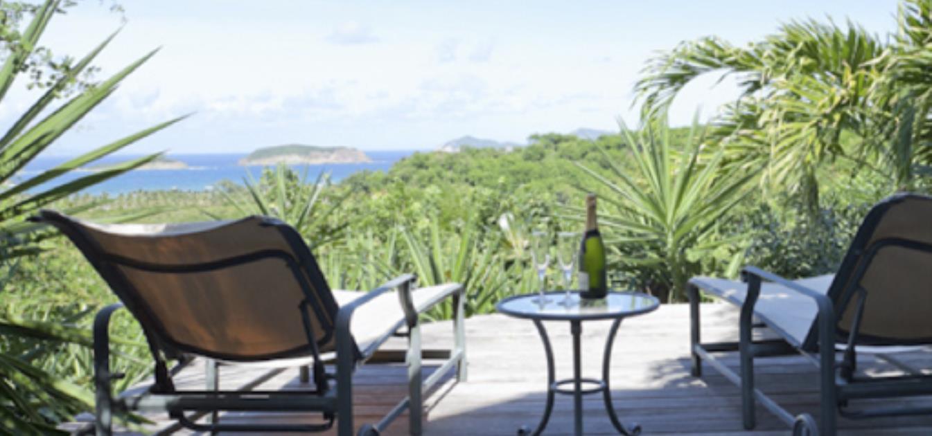 vacation-rentals/st-vincent-and-the-grenadines/mustique/britannia-bay/sea-fan