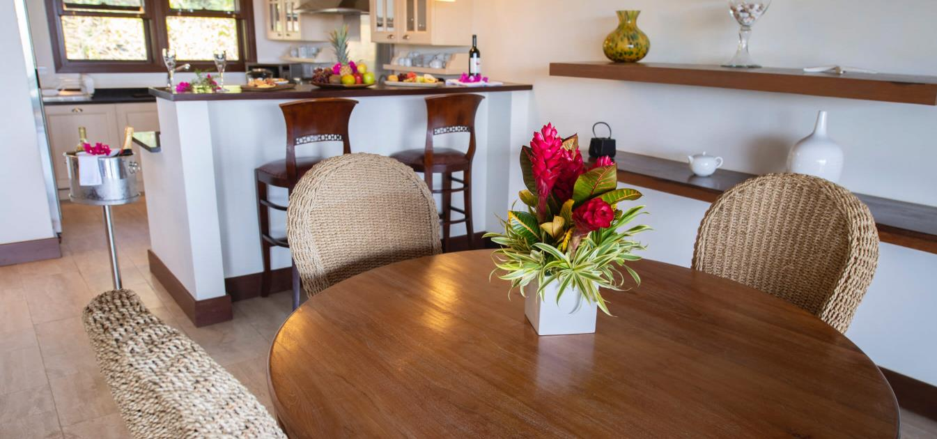 vacation-rentals/st-vincent-and-the-grenadines/canouan/canouan/where-else-villa