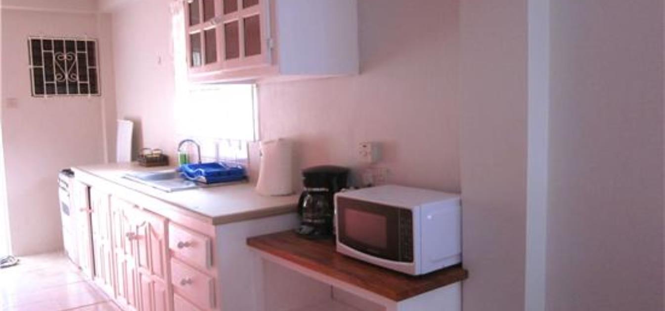 vacation-rentals/st-vincent-and-the-grenadines/st--vincent/arnos-vale/buttercup-cottage-anthurium-apt