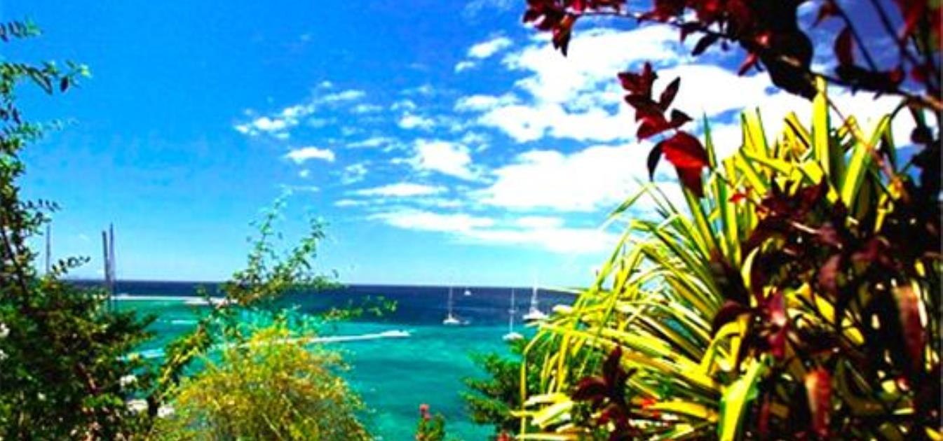 vacation-rentals/st-vincent-and-the-grenadines/st-vincent/blue-lagoon/barefoot-apartment-1-bedroom-sleeps-4