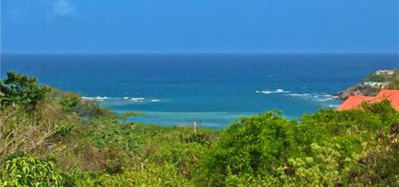 vacation-rentals/grenada/grenada-island/westerhall-point/zanzibar-villa