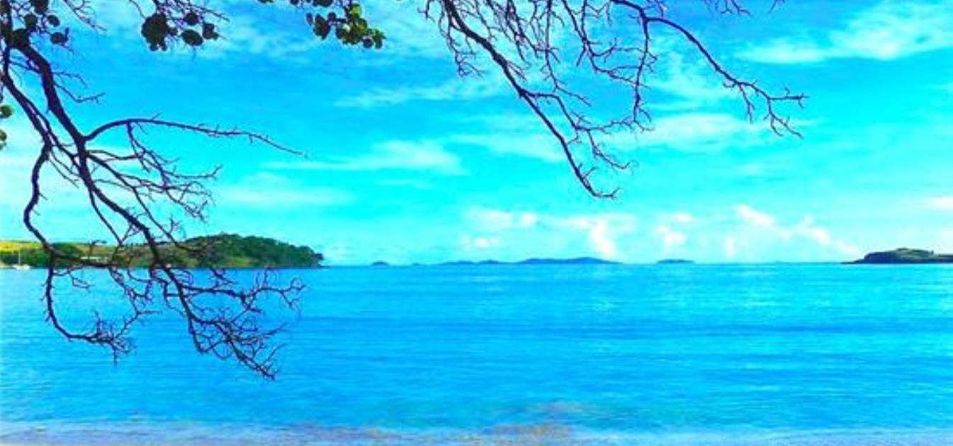 vacation-rentals/st-vincent-and-the-grenadines/bequia/friendship-bay/sugarapple-beach-cottage-1
