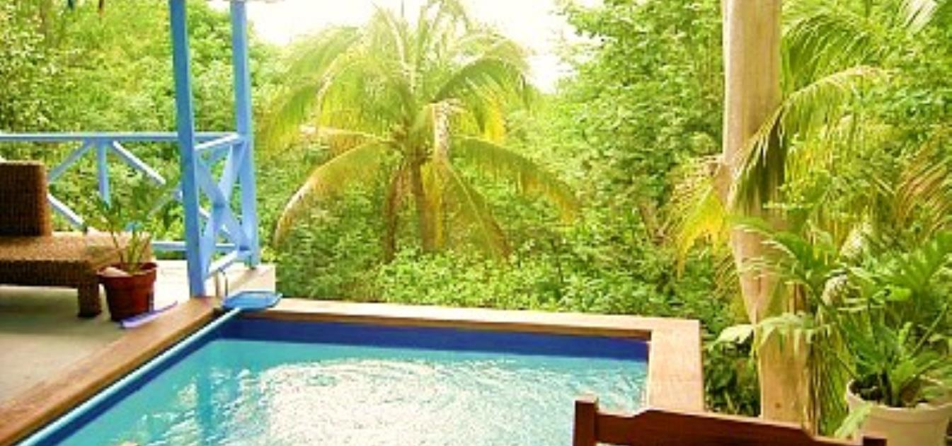 vacation-rentals/st-vincent-and-the-grenadines/bequia/belmont/barefoot-suite