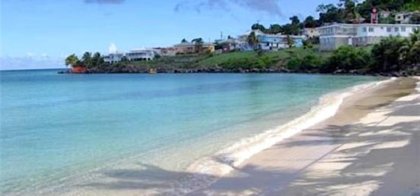 vacation-rentals/grenada/grenada-island/grand-anse/mango-view-apartment