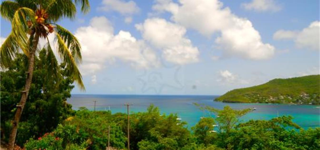vacation-rentals/st-vincent-and-the-grenadines/bequia/lower-bay/ocean-palm-view