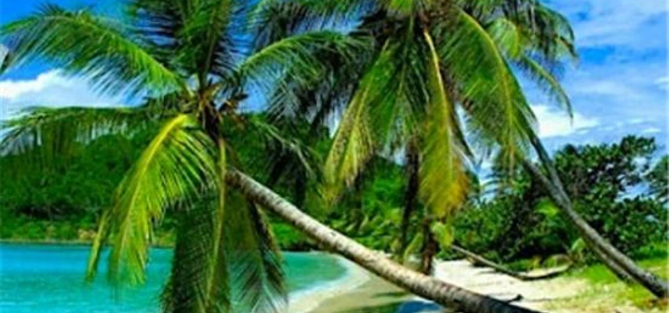 vacation-rentals/st-vincent-and-the-grenadines/union-island/clifton/kings-landing-hotel
