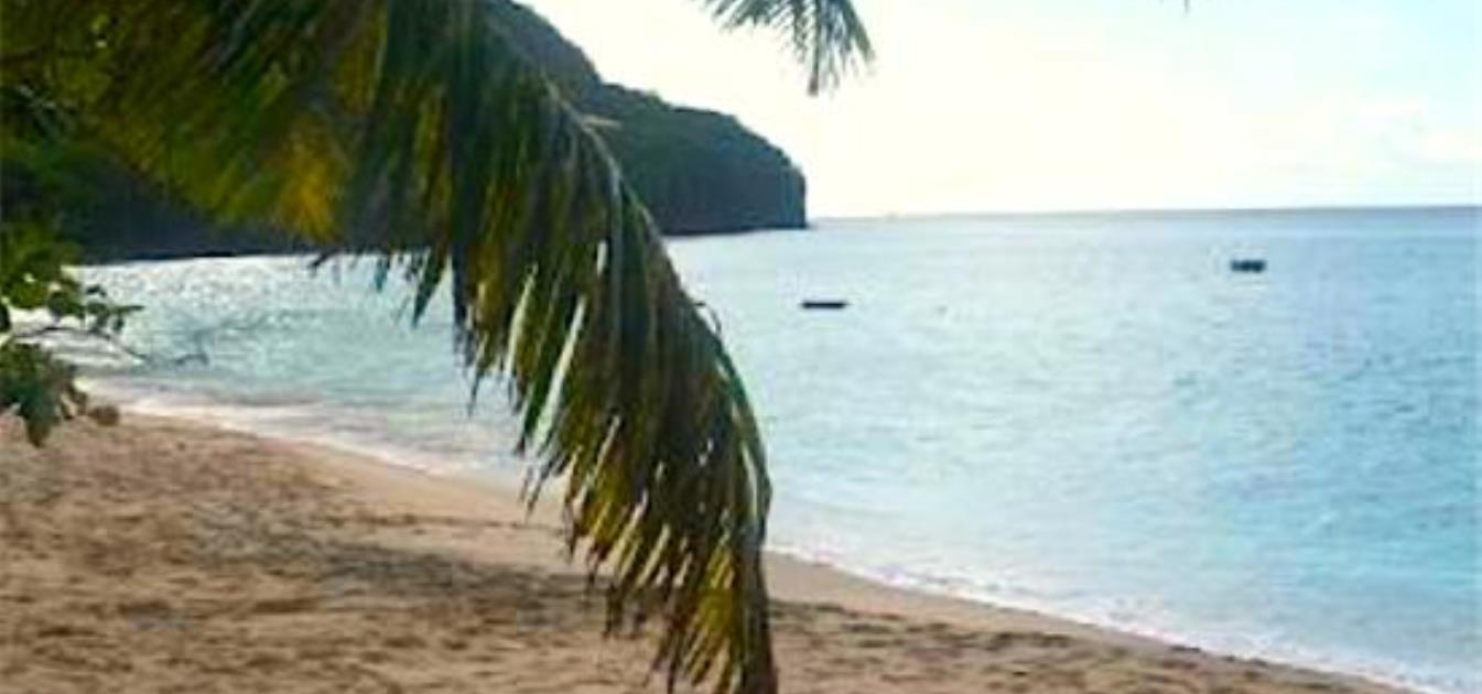 vacation-rentals/st-vincent-and-the-grenadines/bequia/lower-bay/francyn-villa-lower