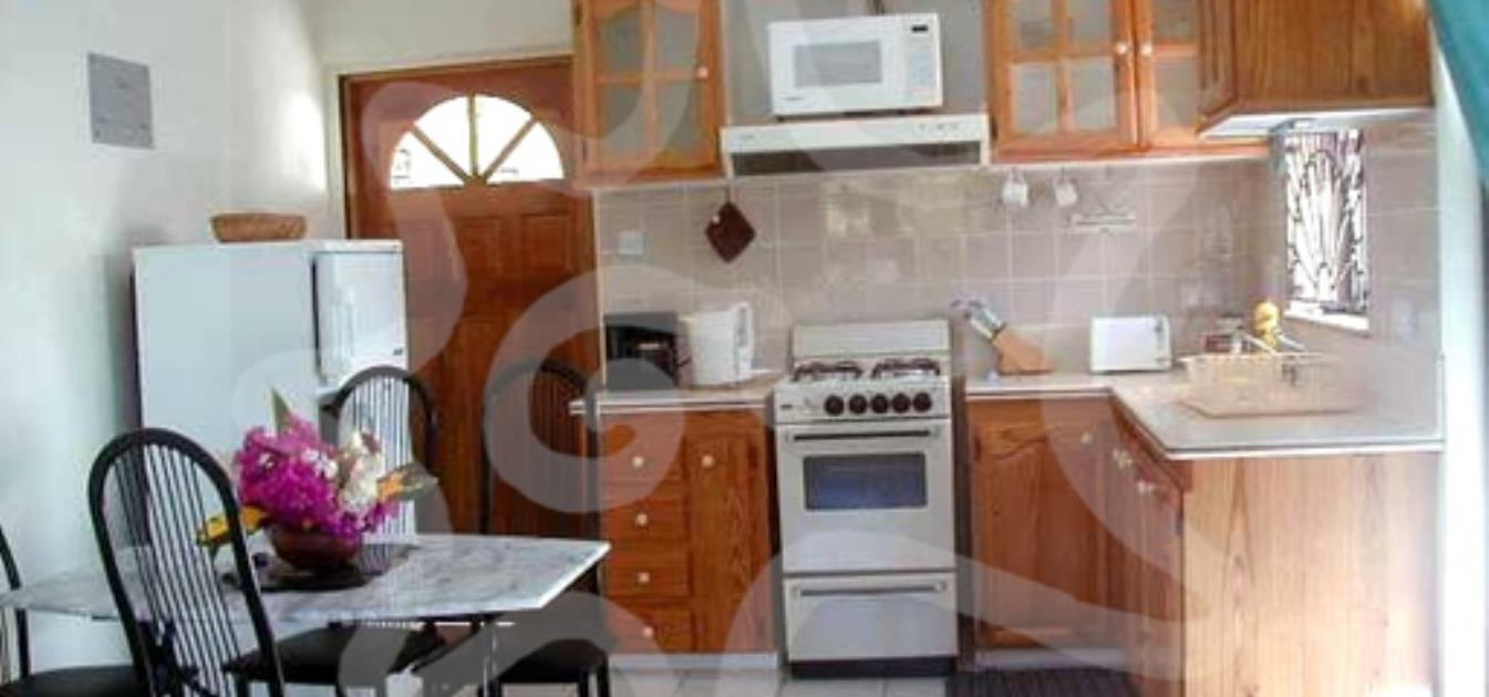 vacation-rentals/st-vincent-and-the-grenadines/bequia/belmont/villa-pattree-north