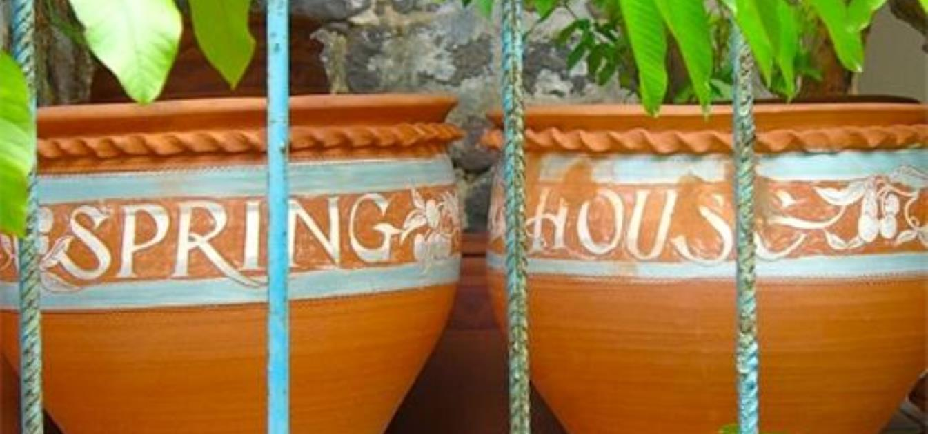 vacation-rentals/st-vincent-and-the-grenadines/bequia/spring/spring-house-bandb
