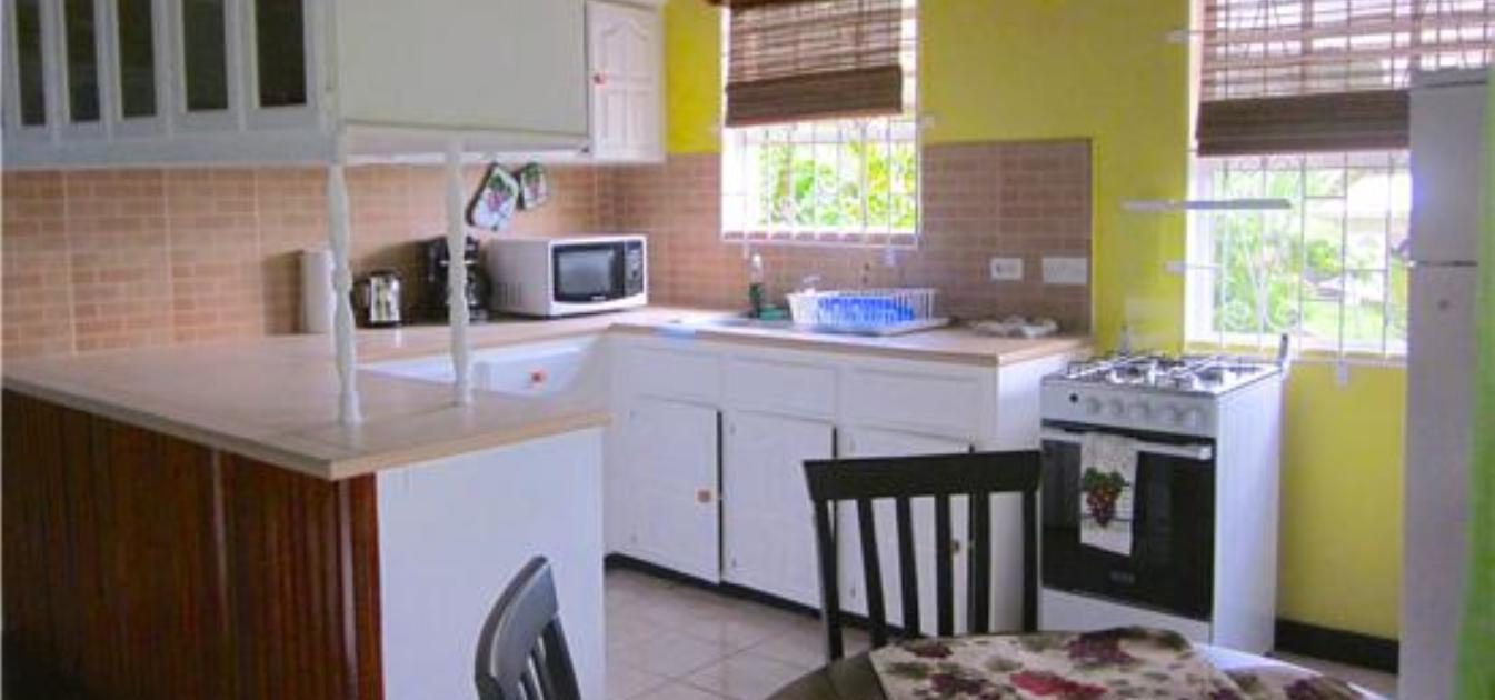 vacation-rentals/st-vincent-and-the-grenadines/st-vincent/arnos-vale/buttercup-cottage-bougainvillea-apt