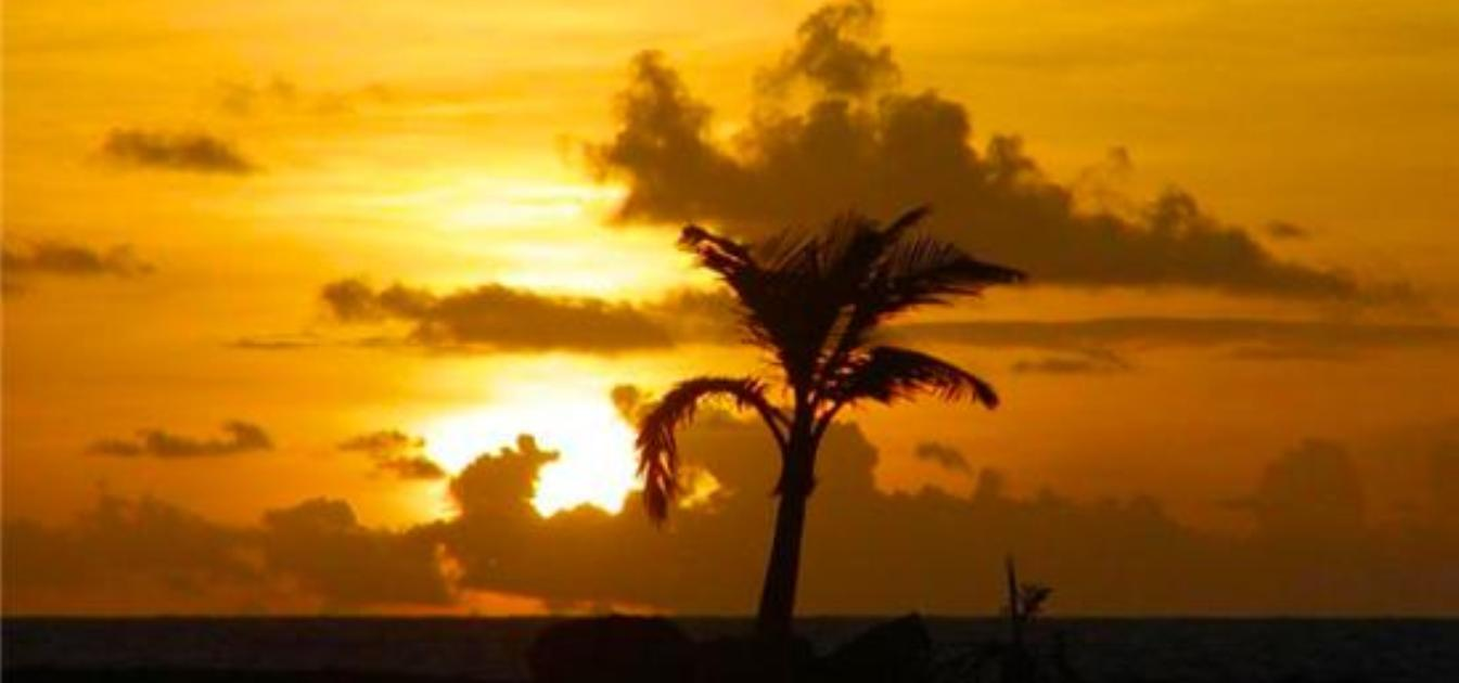 vacation-rentals/barbados/barbados/belair/altamar